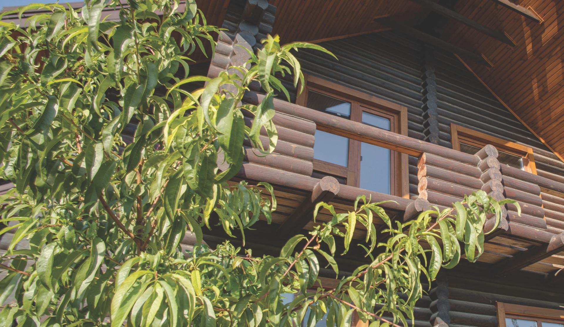 Деревянный дом живет и дышит